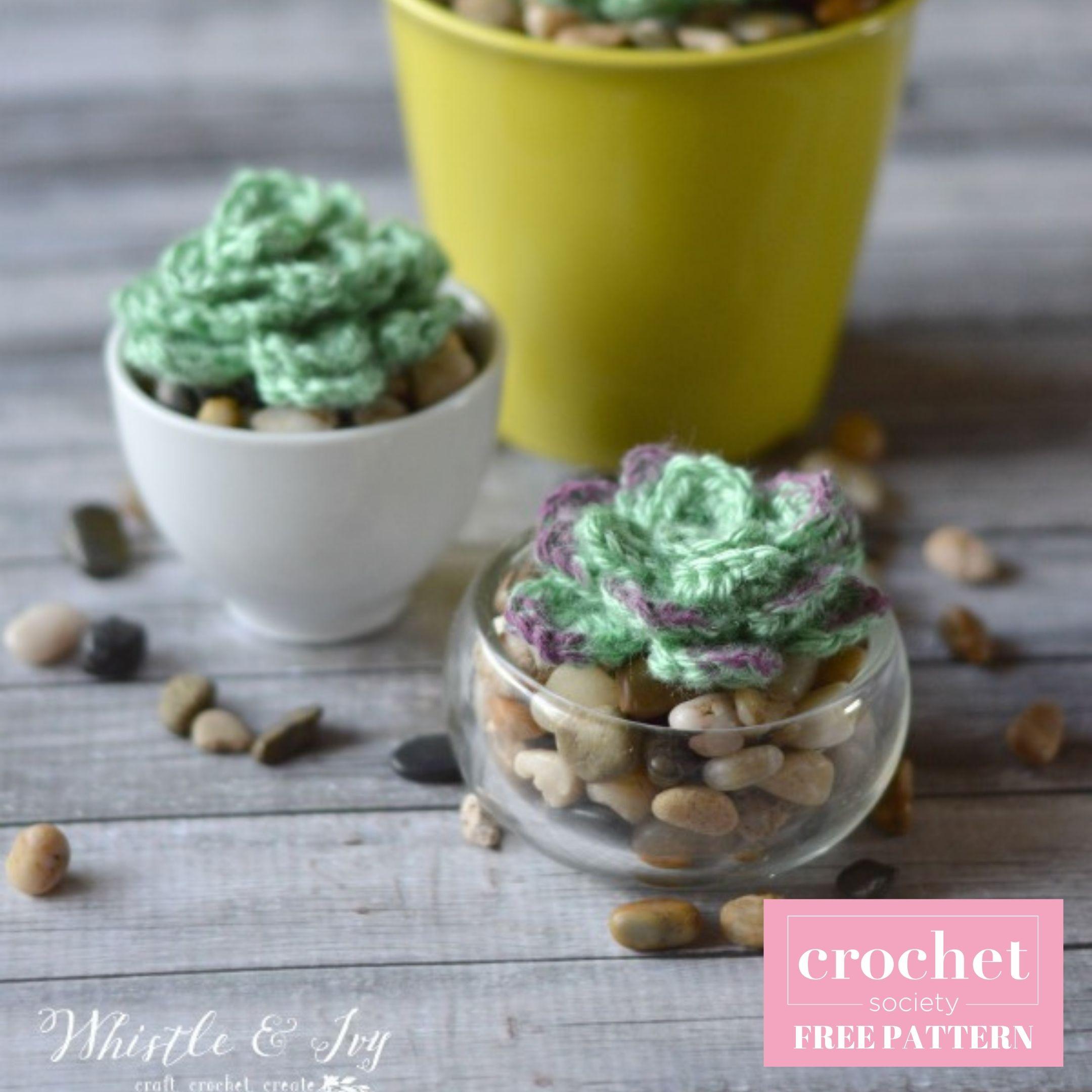 Succulent Crochet Pattern