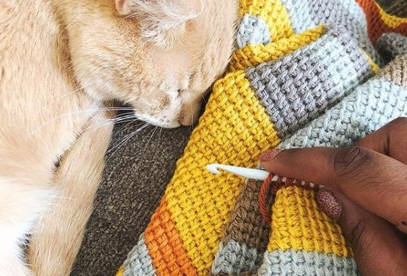 crochet and cat